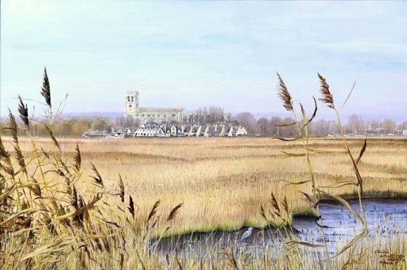 Meadow Fields
