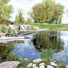 Throop Weir