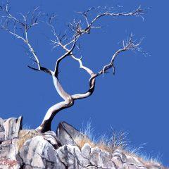 Tsodilo Hills (1) - Botswana